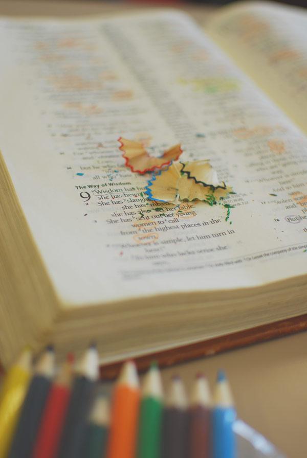 sbs study